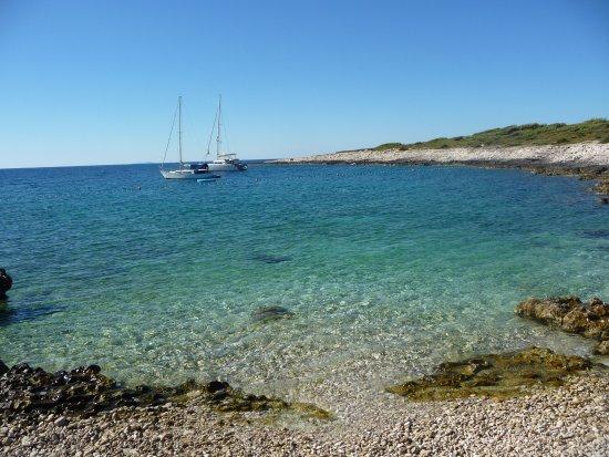 Guesthouse Paulina : isola di Jerolim