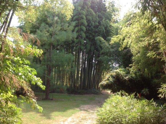 Generargues, Frankrig: Een plekje om even tot rust te komen