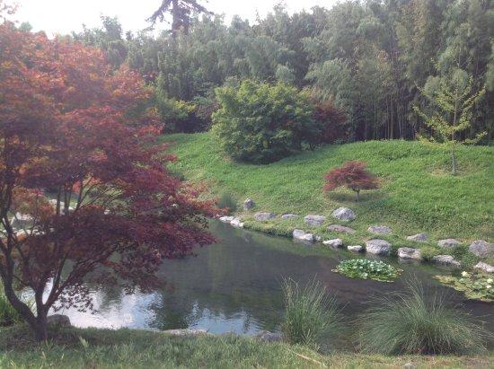 Generargues, Frankrig: De Japanse tuin