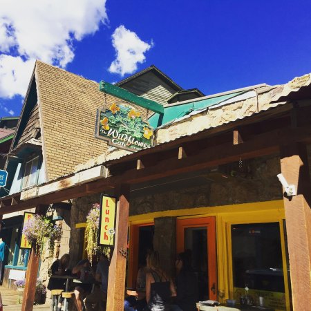 Evergreen, CO: Wildflower Cafe