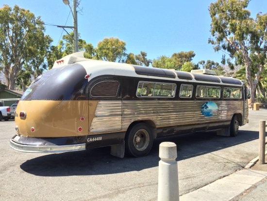 Bus Tours On Catalina Island