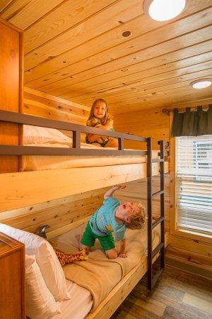 Flagstaff Koa Kids Love The Deluxe Cabin Bunk Beds