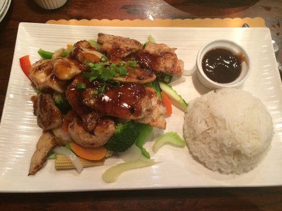 New Port Richey, FL: Chicken Teriyaki