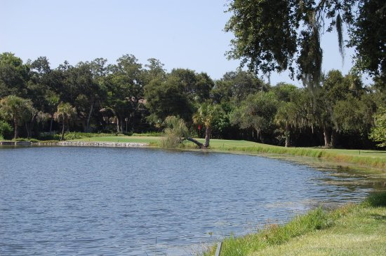 Seminole, Floride : Pond on #7