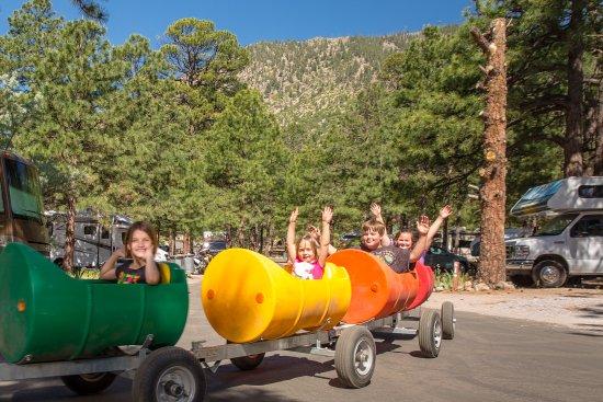 Flagstaff Grand Canyon KOA : Barrel Train Rides