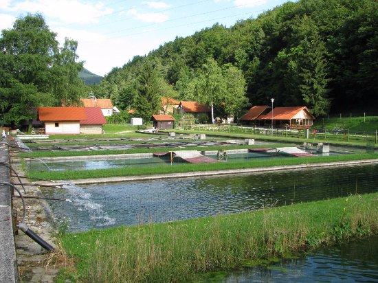 Stranice, Slovénie : Restaurant on the rifght
