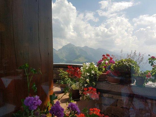 จังหวัดเบอร์กาโม่, อิตาลี: La sala ristorante con una veranda piena di fiori