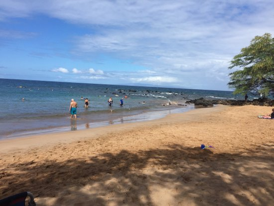 Mokapu Beach: photo1.jpg