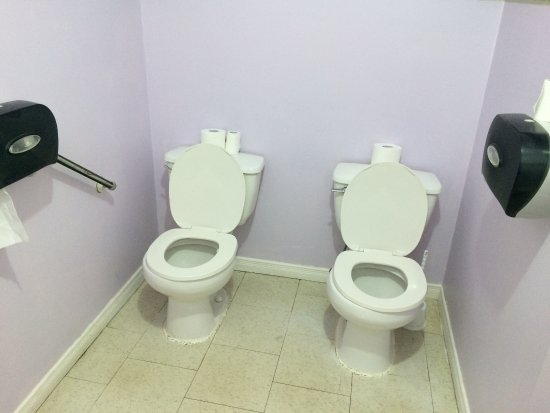 Carol & Earl's Restaurant: Odd toilet set-up in Carol and Earls