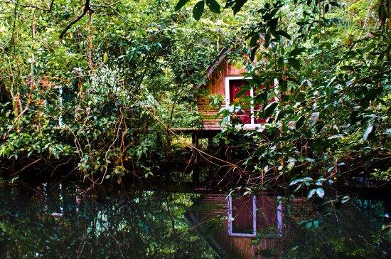 Rio Dulce ภาพถ่าย