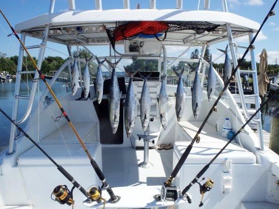 Damn Yankee Fishing Charters