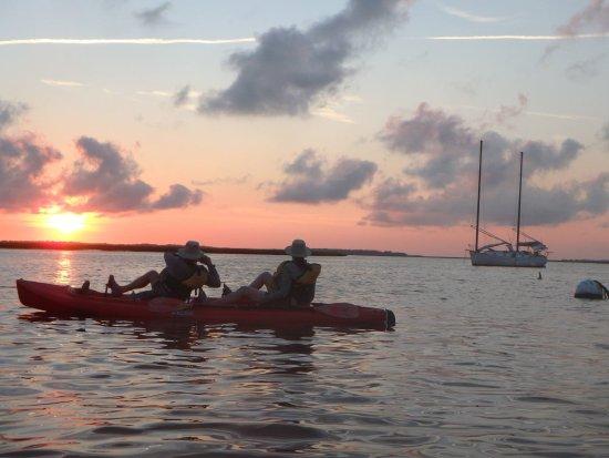 Fernandina Beach, FL: Can you spot the dolphin?