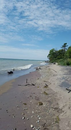 Rondeau Provincial Park: South Trail hike - end of the path
