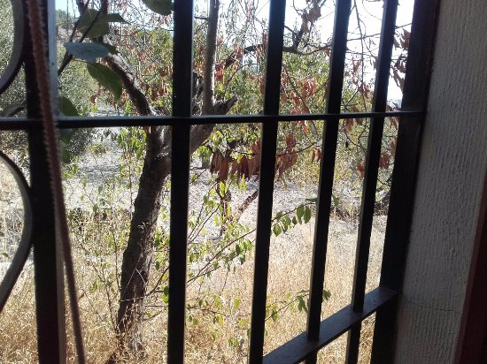 Gualchos, Spain: Mirar hacia la ventana y descubrir aire fresco