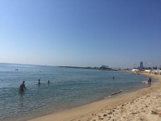 vista de la playa - Bilde av Nova Mar Bella Beach i Barcelona - TripAdvisor