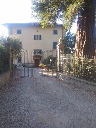 Vicchio صورة فوتوغرافية