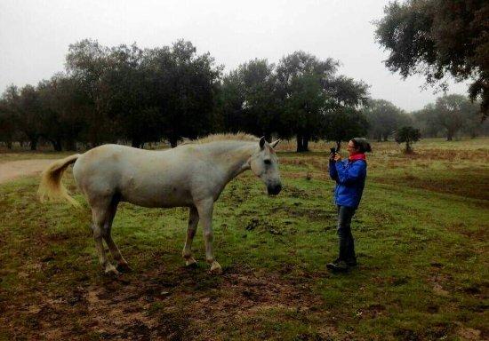Malpartida de Plasencia, Spania: FB_IMG_1473801067828_large.jpg