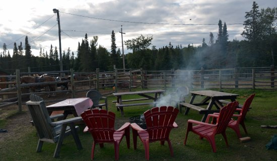 Falcon Lake, Canada: Picnic Area