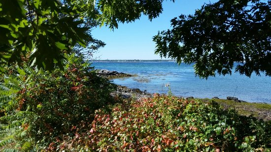 Biddeford, ME: Timber Point Trail
