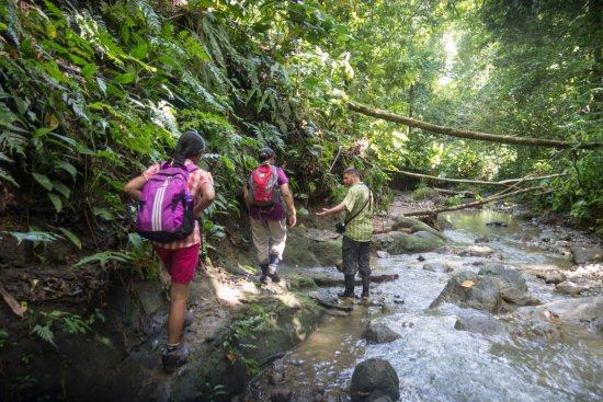 Surcos Tours : Nito always ready to help us in slippery trails