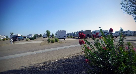 Oasis RV Resort: Staying with us is relaxing and comfortable
