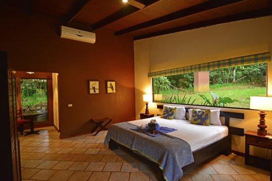 Chachagua, Kosta Rika: jungle room