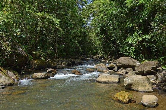 Chachagua, Kosta Rika: river