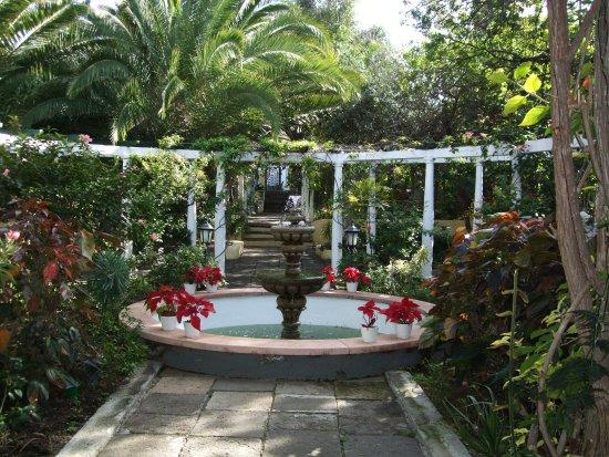 Jardin de orquideas de sitio litre picture of jardin de for Jardines tenerife