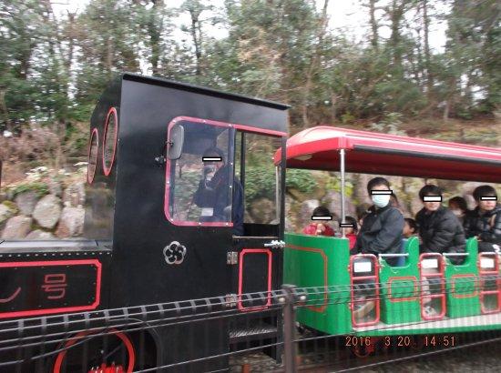 Odawara Wanpaku Land: 子供列車