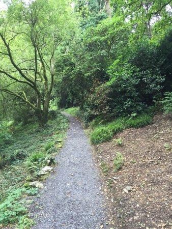 Plas Tan y Bwlch Gardens: photo7.jpg