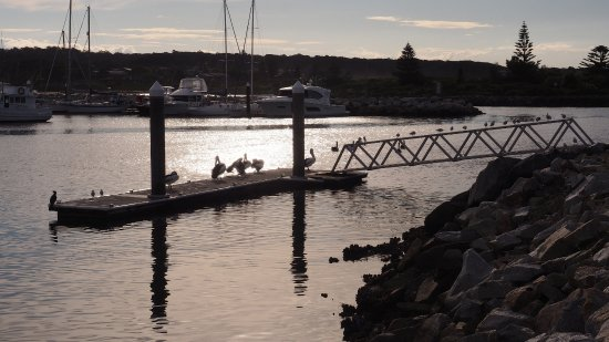 Bermagui, أستراليا: View from park