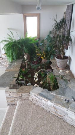 The Garden House Bed & Breakfast: Indoor garden