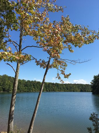 Winchester, TN: photo0.jpg