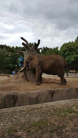 Milwaukee County Zoo : 20160910_125126_large.jpg