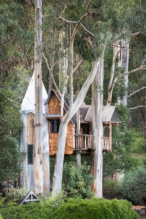 Warburton, Australia: The Tree Castle