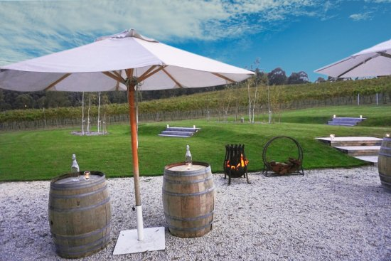Mittagong, Avustralya: Looking out over the vineyard, relaxed on the lawn