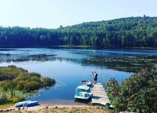 Barry's Bay, كندا: Hush Lodge & Cottages