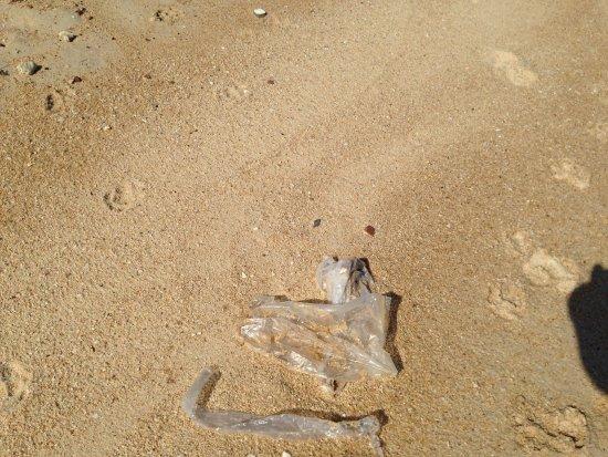 Bang Po Beach: each tide plastic bags wash ashore