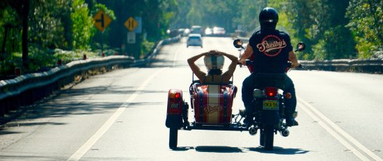 Shelby's Side Car Tours