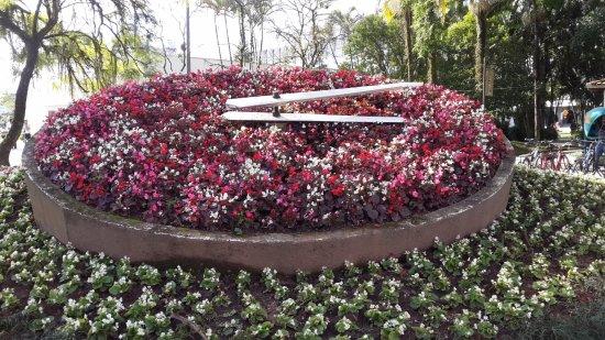 Relogio das Flores: Relógio das Flores