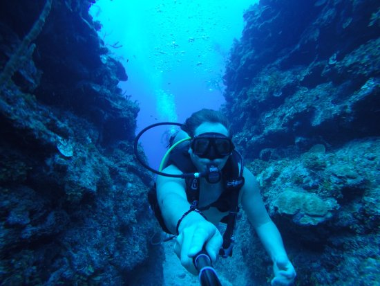 Mahahual Dive Centre : En el Arrecife 40 Cañones