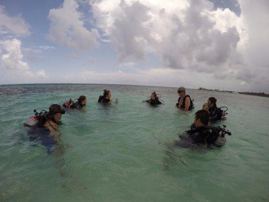Mahahual Dive Centre : Norma en el adiestramiento.