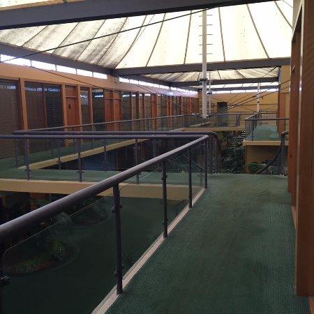 Queanbeyan, Австралия: Hallway of the Atrium