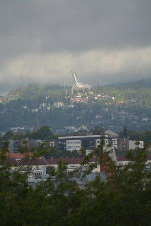 Botanical Gardens (Botanisk Hage og Museum) : il trampolino visto dall'orto botanico