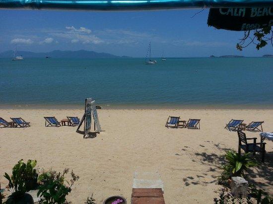 Calm Beach Resort : TA_IMG_20160914_124437_large.jpg