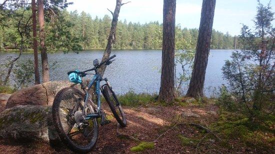 Finlandia meridional, Finlandia: Nuuksio national park mtb