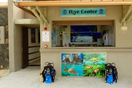 Belle Mare: Crystal Diving Welcomes You!