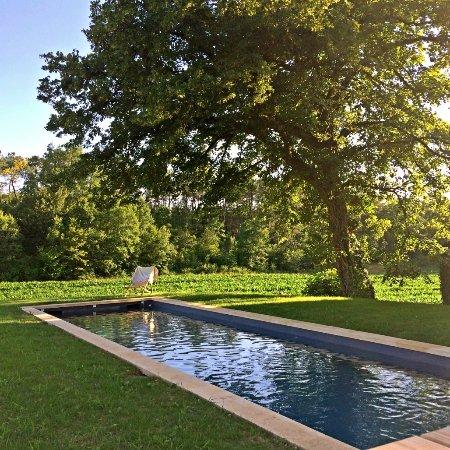 Saint-Genies, Francia: piscine dans les champs