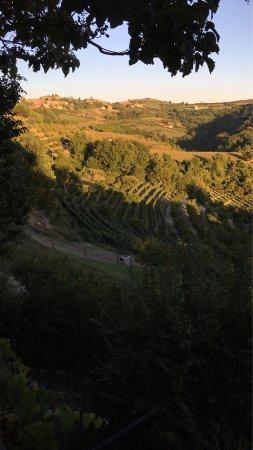 Agriturismo Bevione : photo0.jpg