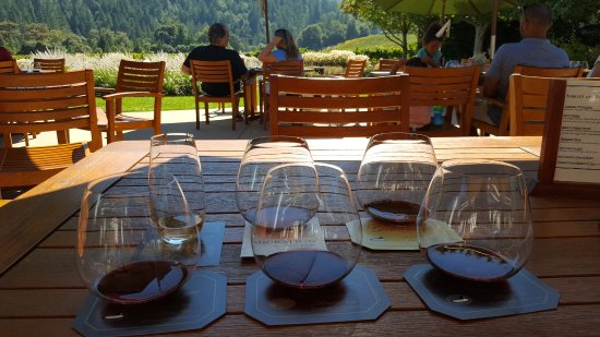 Goldeneye Winery: Wine tasting